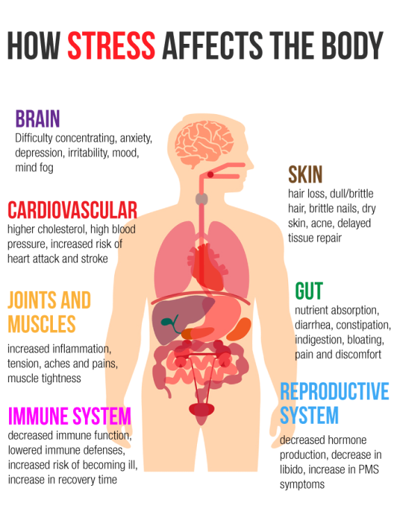 how-stress-affects-the-body-1